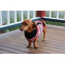 Dogue striped jumper - Red