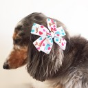Hair Clip for kids or dogs