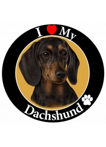 Dachshund large magnet Black & Tan
