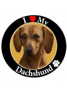 Dachshund large magnet Red