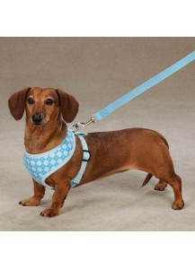 East Side Collection Dog Harness - blue