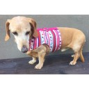 Easyfit Dog Harness - Size XL