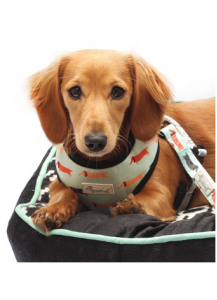 Moo+Twig reversible harness Snag Pack